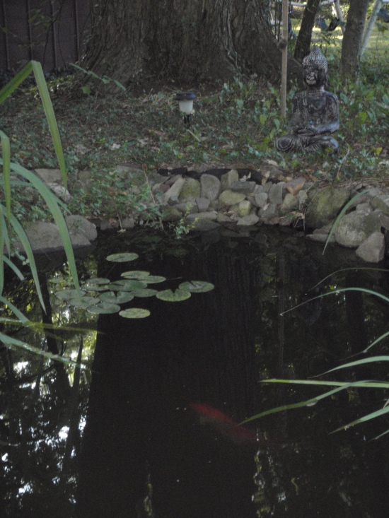 Pond with Buddha