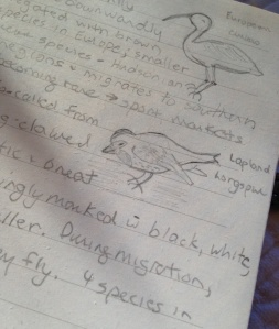 Definitions and drawings