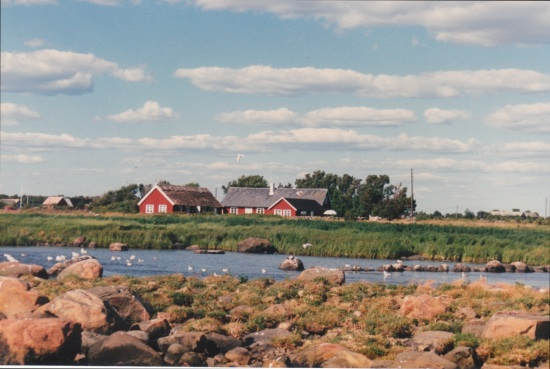 The tiny farm near Falkenberg, Sweden where the Johansson family lived at the turn of the century. Here my grandmother, Hulda, helped her mother and father with baking, cleaning fishing gear, etc.