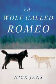 A Wolf Called Romeo book cover