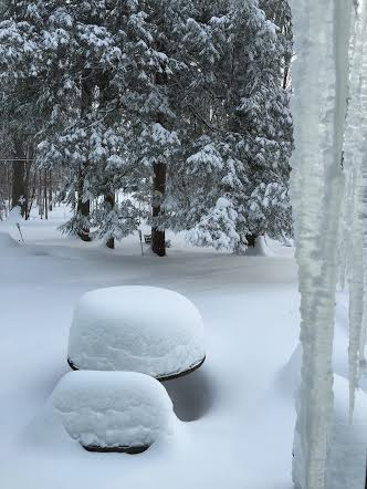 Deep snow in backyard