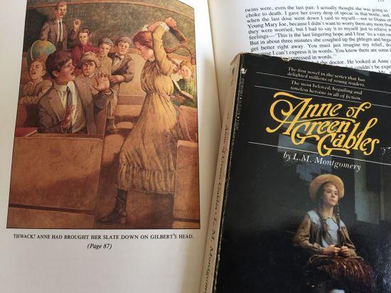 Anne of Green Gables cover, illustration