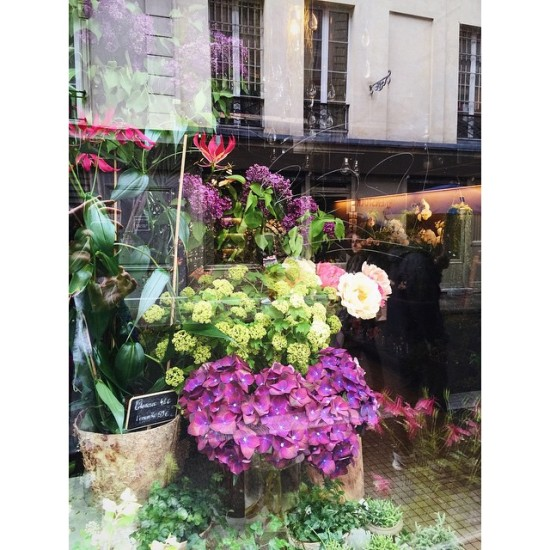 Floral shop window