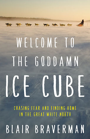WelcomeToTheIceCube