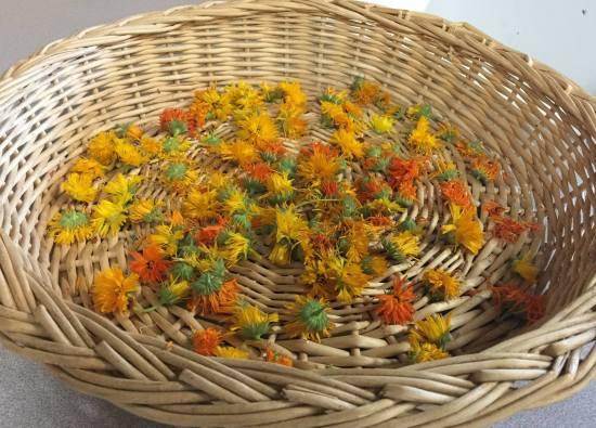Marigolds.jpg