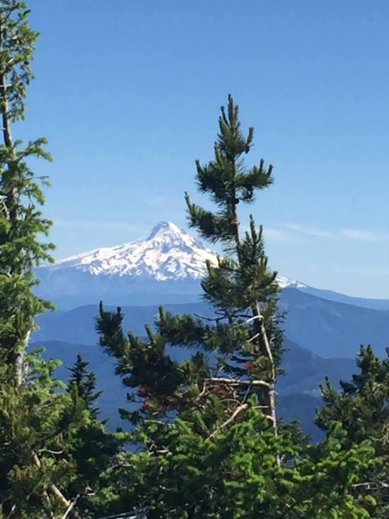 Mt.Hood.jpg