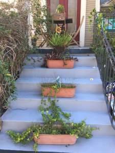 StairwayGarden